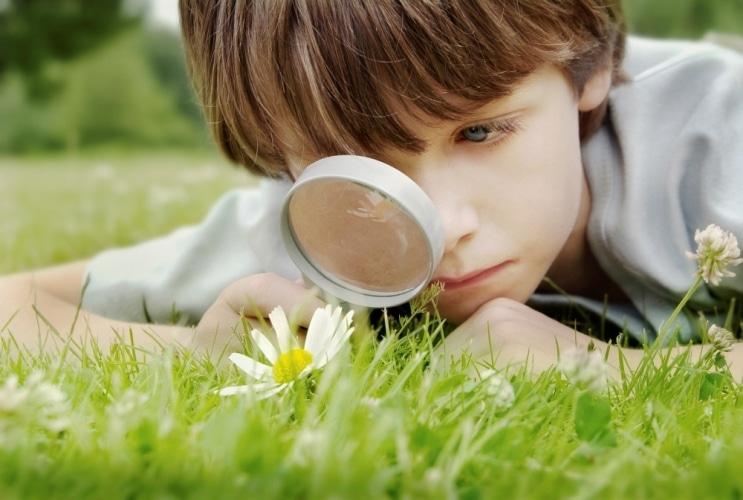 Toezicht en inspectie kinderopvang