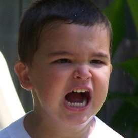 temperamentvolle kinderen.jpg