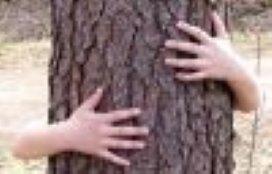 'Kinderen hebben recht op natuur'