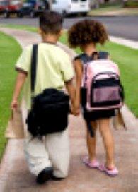 Raad voor de Kinderbescherming onder de loep