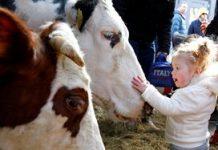 Agrarische kinderopvang heeft geen last van vraaguitval
