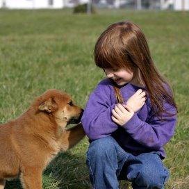 Kinderen met een hond als huisdier ervaren minder angst in het leven dan kinderen zonder hond.