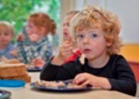 Kamer bezorgd over toezicht kinderopvang
