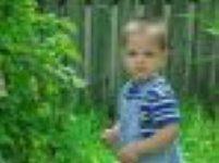 Planten gunstig voor kinderen