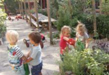 Bij De Regenboog hopen ze dat ze met het behalen van het Groene Kwaliteitsmerk collega's in de stad kunnen inspireren ook verder te vergroenen.