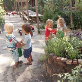 <p>Bij De Regenboog hopen ze dat ze met het behalen van het Groene Kwaliteitsmerk collega's in de stad kunnen inspireren ook verder te vergroenen.</p>