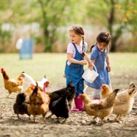 Agrarische kinderopvang.jpg