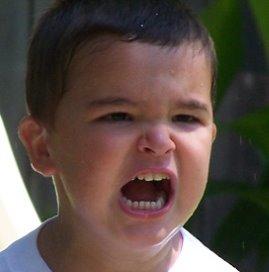 <p>Meestal maken kinderen speelgoed niet met gemene opzet kapot.</p>