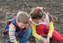 1. Tips agrarische kinderopvang.jpg