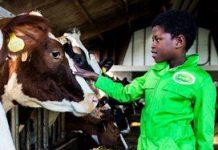 Aantal agrarische kinderopvanglocaties groeit