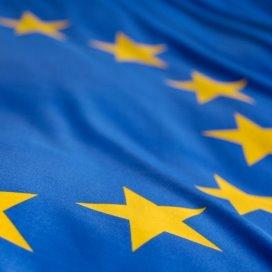 smallsteps naar Europees Hof