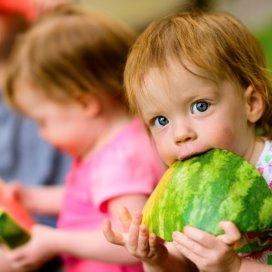 1Groentefruit.jpg