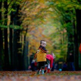 Spoorzoeken in het bos