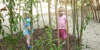 video-de-inspirerende-buitenruimte-van-kinderdagverblijf-eigen-wijs